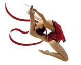 Разновидности гимнастики